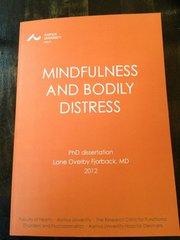 mindfulness bog anbefaling
